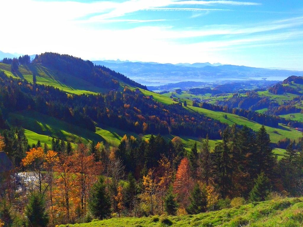 Go hiking, luging, climbing at Atzmännig in summer...